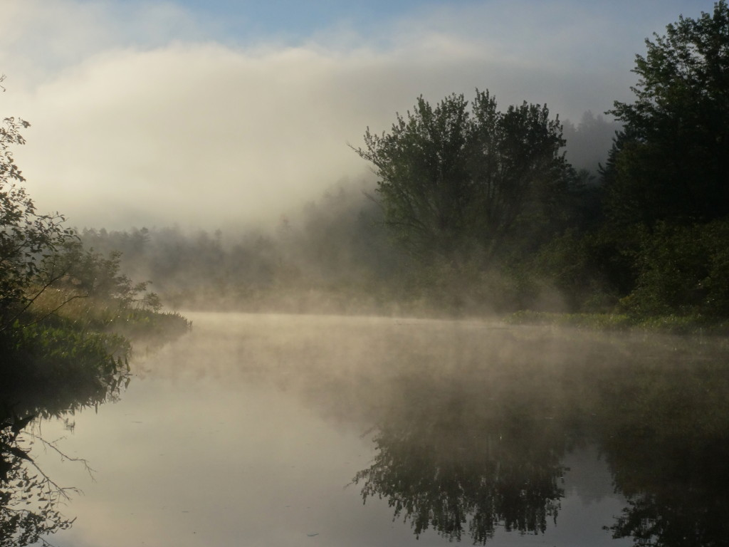 Trees slowly reveal themselves as morning mist lifts off the surface of a river.