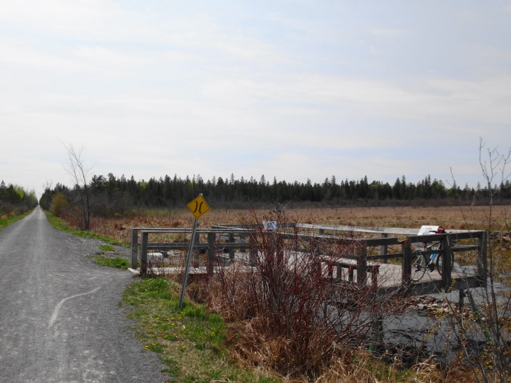 An observation platform at the side of a gravel trail overlooks the Goulbourn Wetland.
