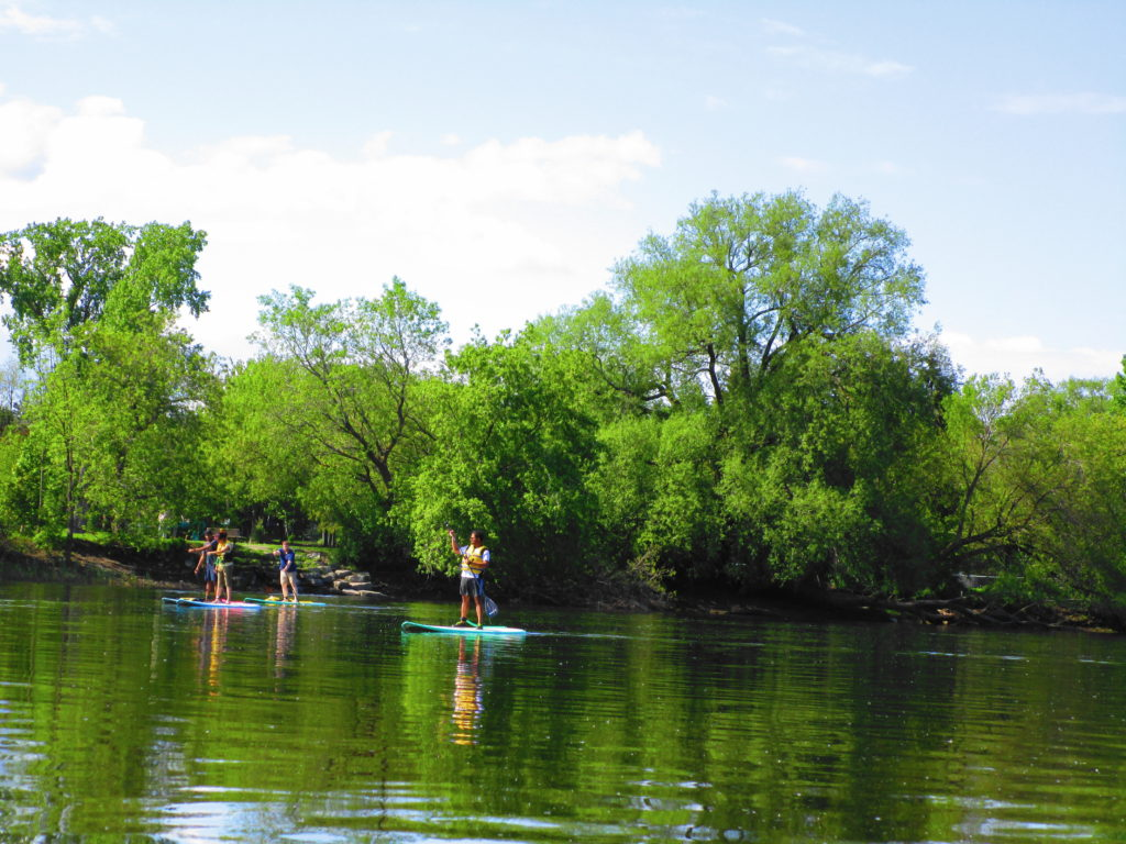 A group of four strand-up paddlerboarders cruuise up the Rideau River.
