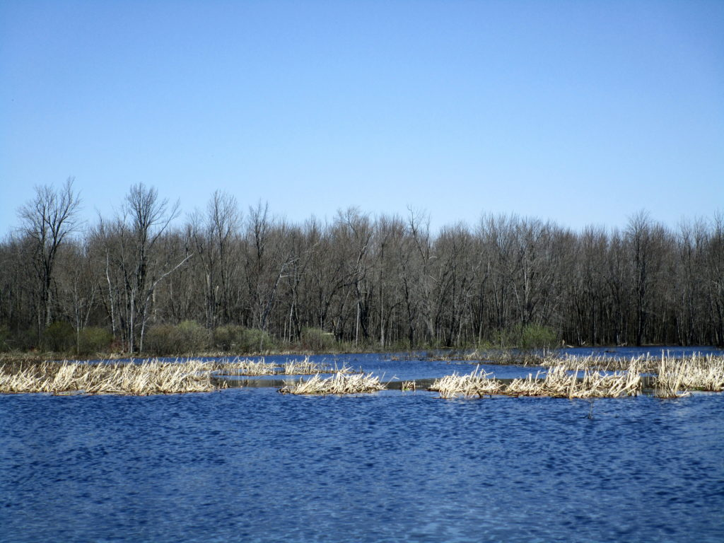 A wide lake of floodwaters spreads toward a distance stand of trees beside the Jock River.
