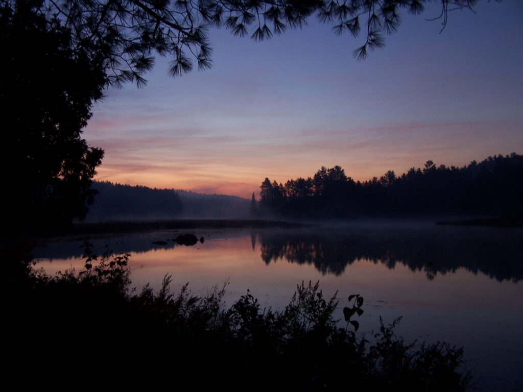 A pale peach and blue light heralds dawn over the Barron River.