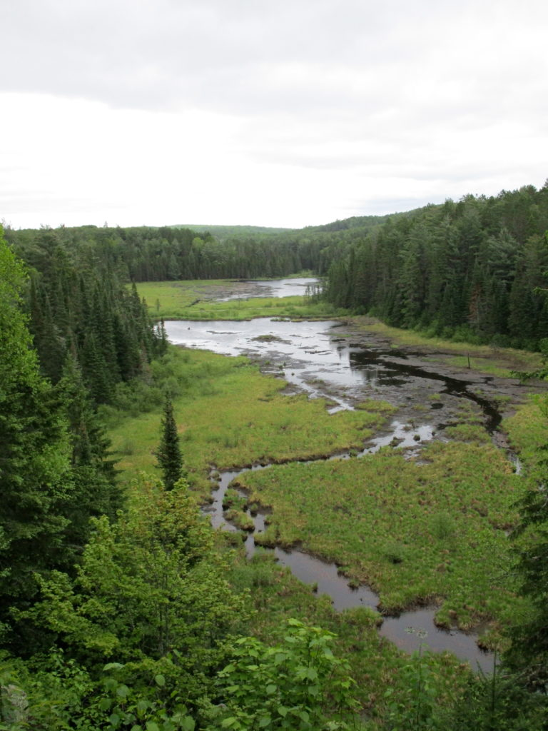 A beaver pond and meadow lie below a high lookout.